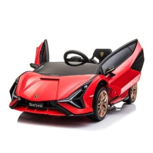 Xe O To Dien Lamborghini Sian Qls 6388 4.jpg